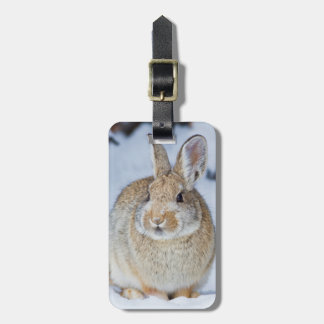 Wyoming, Sublette County, Nuttall's Cottontail 2 Luggage Tag