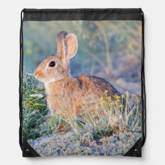 Wyoming, Sublette County, Nuttall's Cottontail 3 Drawstring Backpack