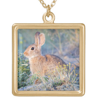 Wyoming, Sublette County, Nuttall's Cottontail 3 Gold Plated Necklace