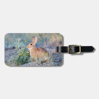 Wyoming, Sublette County, Nuttall's Cottontail 3 Luggage Tag
