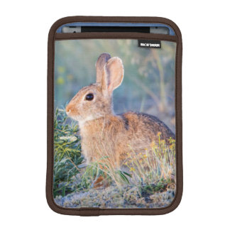 Wyoming, Sublette County, Nuttall's Cottontail 3 Sleeve For iPad Mini