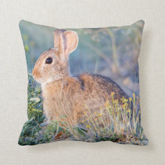 Wyoming, Sublette County, Nuttall's Cottontail 3 Throw Pillow