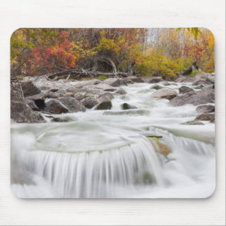 Wyoming, Sublette County, Pine Creek flowing Mouse Pad