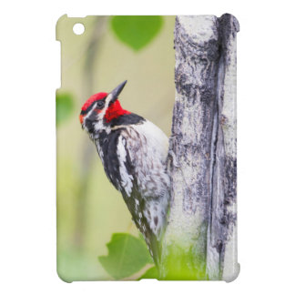 Wyoming, Sublette County, Red-naped Sapsucker iPad Mini Covers