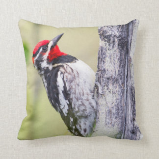 Wyoming, Sublette County, Red-naped Sapsucker Throw Pillow