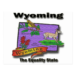 Wyoming The Equality State Bird Dear Bush Postcards