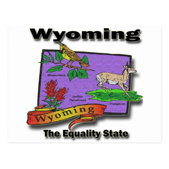 Wyoming The Equality State Bird Dear Bush Postcard