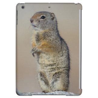 Wyoming, Uintah Ground Squirrel standing on hind iPad Air Case