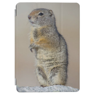 Wyoming, Uintah Ground Squirrel standing on hind iPad Air Cover