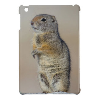 Wyoming, Uintah Ground Squirrel standing on hind iPad Mini Cases