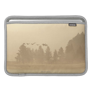 Wyoming, USA Sleeves For MacBook Air