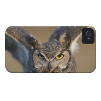 Wyoming, USA iPhone 4 Case