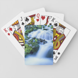 Wyoming. USA. Periodic Spring during period of Playing Cards