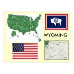 Wyoming, USA Postcard