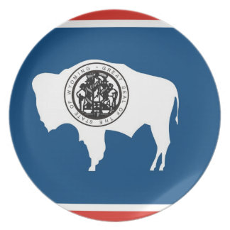 wyoming usa state flag plate america