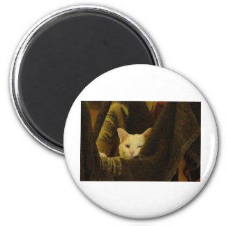 wyspur1 2 inch round magnet