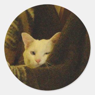 wyspur1 classic round sticker