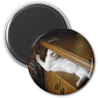 wyspur2 2 inch round magnet
