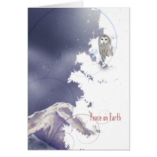 X003 Winter Owl Cards