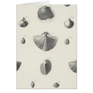 X carbonífero tarjeta de felicitación