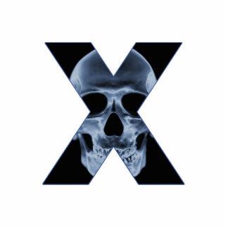 X-Cráneo Pin Fotoescultura