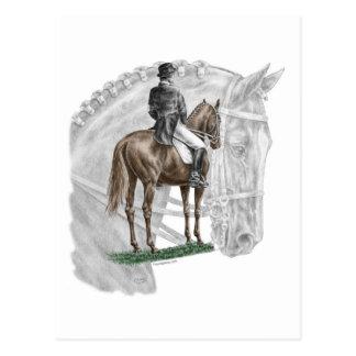 X-Halt Salute Dressage Horse Postcard