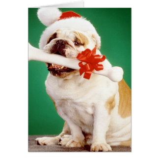 X-mas bulldog with x-mas hat and bone greeting card