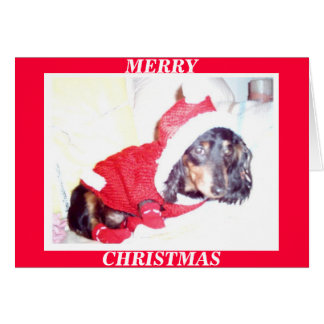 X MAS CHRISTMAS CARDS - HEIDI PUP - DASCHUND MINI