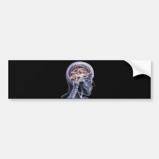 X-Ray Brain Bumper Sticker