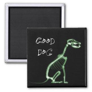 X-RAY GOOD DOG SKELETON SITTING - GREEN REFRIGERATOR MAGNET