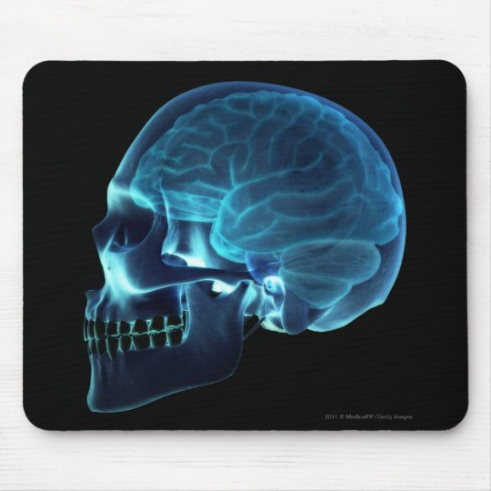 X-ray of the brain inside a skull mouse pad