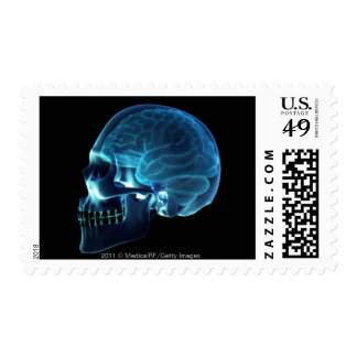 X-ray of the brain inside a skull stamp