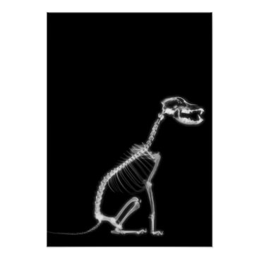Halloween Themed X-RAY PUPPY DOG SKELETON SITTING - B&W POSTER