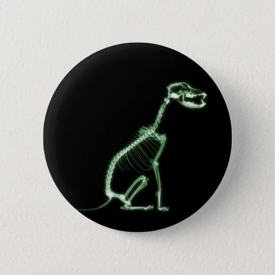 X-RAY PUPPY DOG SKELETON SITTING - GREEN BUTTON