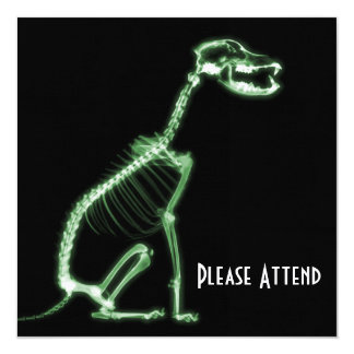 X-RAY PUPPY DOG SKELETON SITTING - GREEN CARD