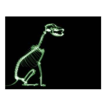 Halloween Themed X-RAY PUPPY DOG SKELETON SITTING - GREEN POSTCARD