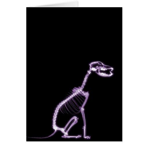 X-RAY PUPPY DOG SKELETON SITTING - PURPLE CARDS