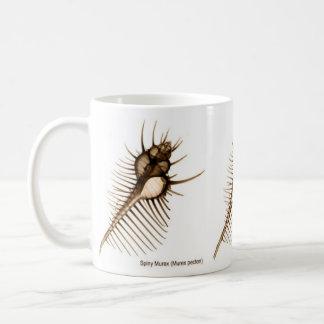 X-Ray Seashell Mug Venus Comb Shell