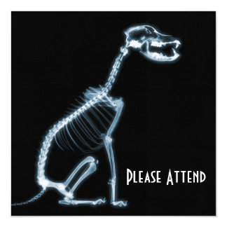 X-RAY SKELETON DOG SITTING - BLUE & BLACK CARD