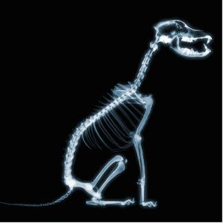 X-RAY SKELETON DOG SITTING - BLUE & BLACK CUTOUT