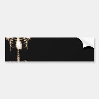 X-RAY SKELETON TORSO RIBS - SEPIA BUMPER STICKER
