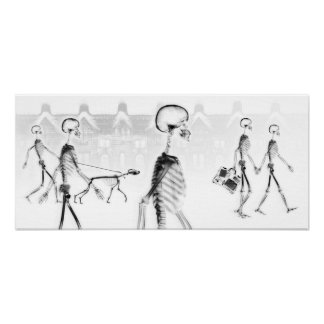X-Ray Skeletons Afternoon Stroll Black & White Poster