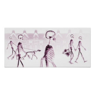 X-Ray Skeletons Afternoon Stroll White Pink Print