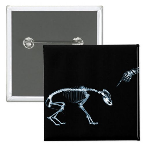 X-Ray Skeletons Bad Dog Blue 2 Inch Square Button