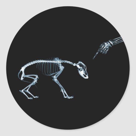 X-Ray Skeletons Blue Bad Dog Classic Round Sticker