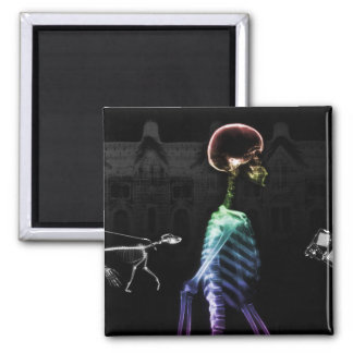 X-Ray Skeletons Midnight Stroll - B&W & Rainbow Magnet