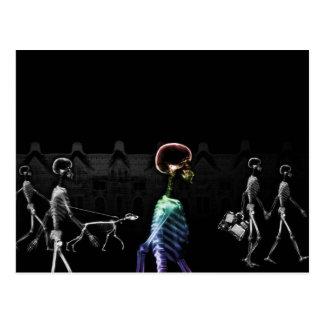 X-Ray Skeletons Midnight Stroll - B&W & Rainbow Post Cards