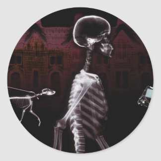 X-Ray Skeletons Midnight Stroll Classic Round Sticker
