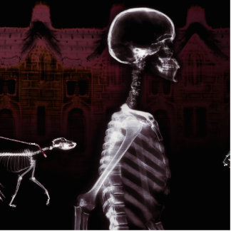 X-Ray Skeletons Midnight Stroll Photo Sculpture