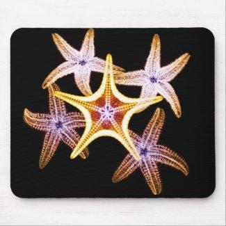 X-ray Starfishery - Mousepad mousepad